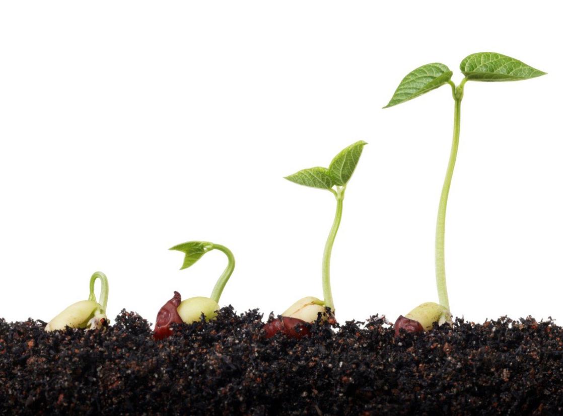 4 bước giúp xóa bỏ nghiệp xấu mà bạn đã gieo