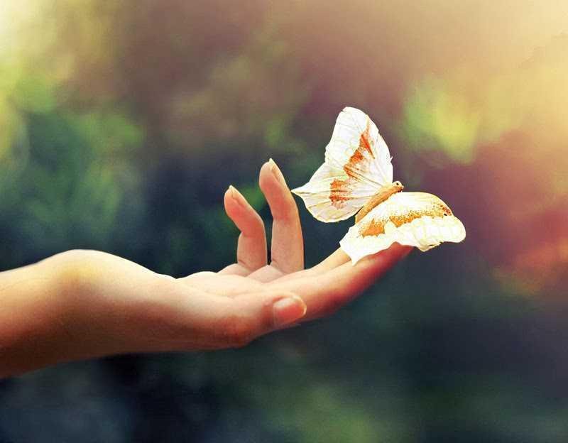 8 câu chuyện ngắn thâm thúy về cuộc đời