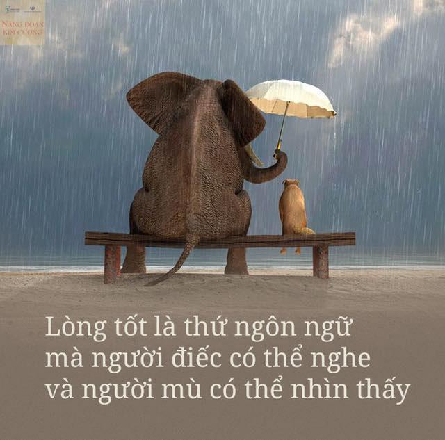 Lòng tốt là ngôn ngữ mà người điếc có thể nghe và người mù có thể thấy